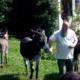 Verein Eselrettung Österreich